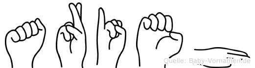 Arieh im Fingeralphabet der Deutschen Gebärdensprache