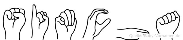 Simcha im Fingeralphabet der Deutschen Gebärdensprache