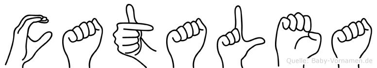 Catalea in Fingersprache für Gehörlose