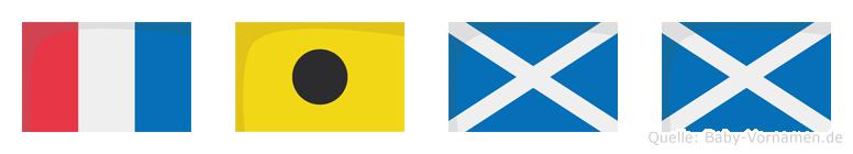 Timm im Flaggenalphabet