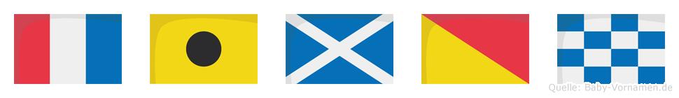 Timon im Flaggenalphabet