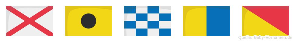 Vinko im Flaggenalphabet