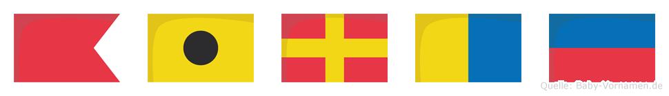 Birke im Flaggenalphabet