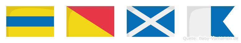 Doma im Flaggenalphabet