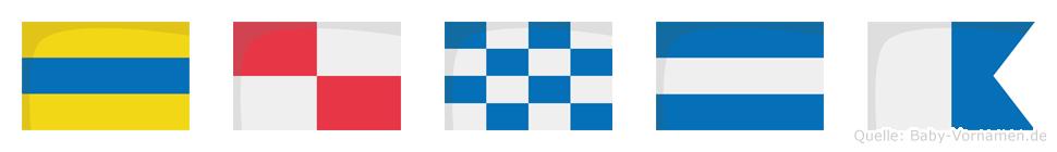 Dunja im Flaggenalphabet