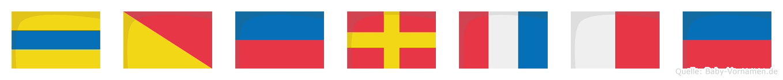 Dörthe im Flaggenalphabet