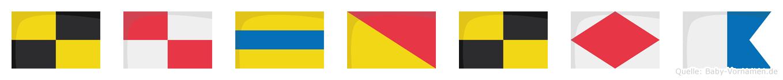 Ludolfa im Flaggenalphabet