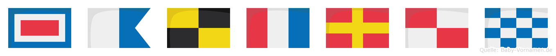 Waltrun im Flaggenalphabet