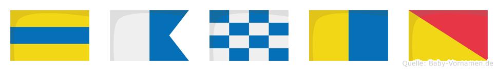 Danko im Flaggenalphabet