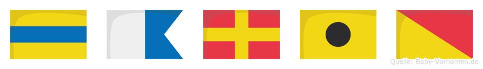 Dario im Flaggenalphabet