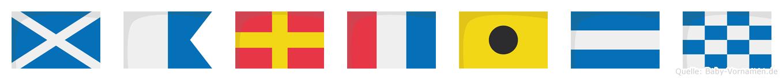 Martijn im Flaggenalphabet