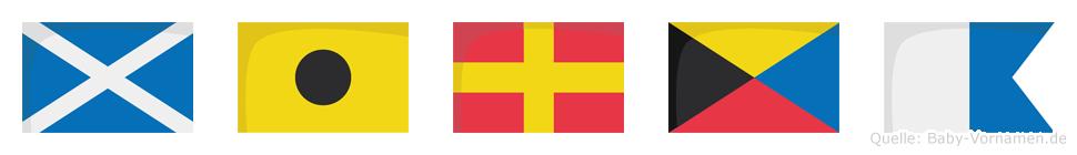 Mirza im Flaggenalphabet