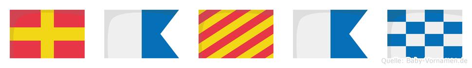 Rayan im Flaggenalphabet