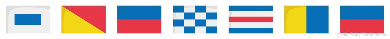 Söncke im Flaggenalphabet