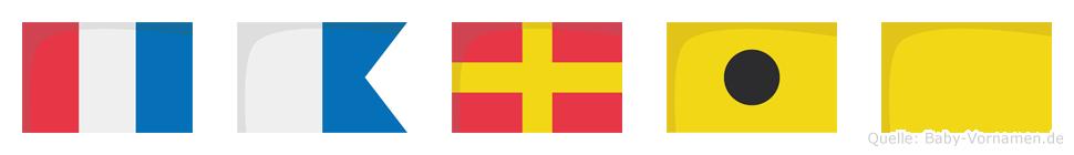 Tariq im Flaggenalphabet