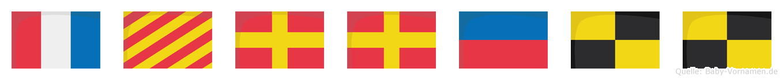 Tyrrell im Flaggenalphabet