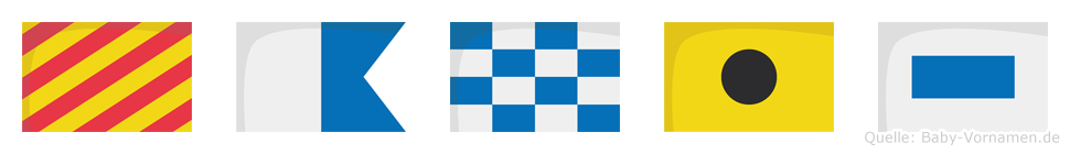 Yanis im Flaggenalphabet