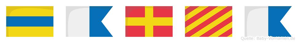Darya im Flaggenalphabet
