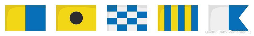 Kinga im Flaggenalphabet