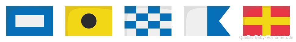 Pinar im Flaggenalphabet