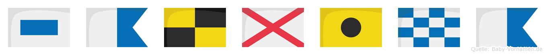 Salvina im Flaggenalphabet