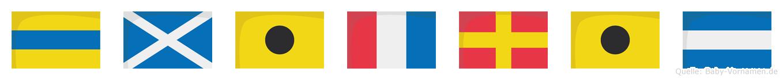 Dmitrij im Flaggenalphabet
