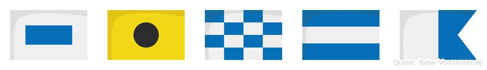 Sinja im Flaggenalphabet