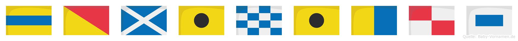 Dominikus im Flaggenalphabet