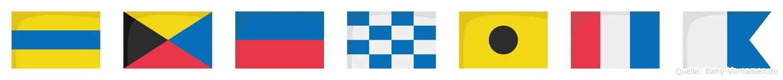 Dzenita im Flaggenalphabet