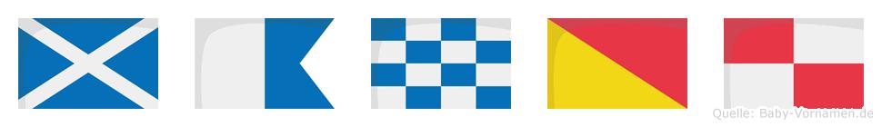 Manou im Flaggenalphabet