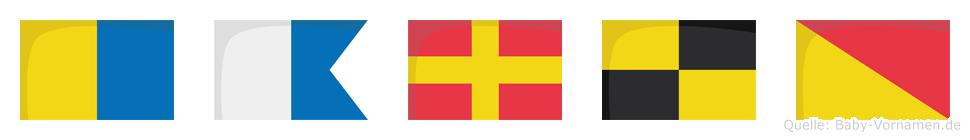 Karlo im Flaggenalphabet