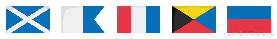 Matze im Flaggenalphabet