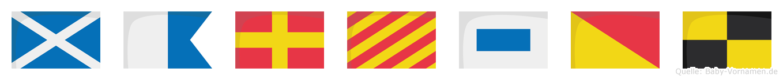 Marysol im Flaggenalphabet