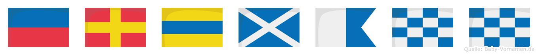 Erdmann im Flaggenalphabet