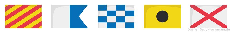 Yaniv im Flaggenalphabet