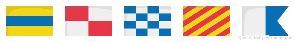 Dunya im Flaggenalphabet