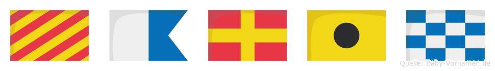 Yarin im Flaggenalphabet