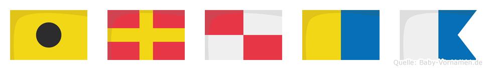 Iruka im Flaggenalphabet
