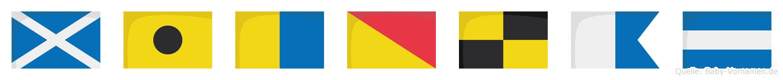 Mikolaj im Flaggenalphabet
