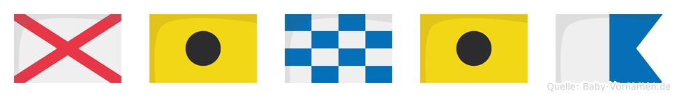 Vinia im Flaggenalphabet
