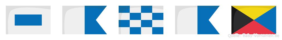 Sanaz im Flaggenalphabet