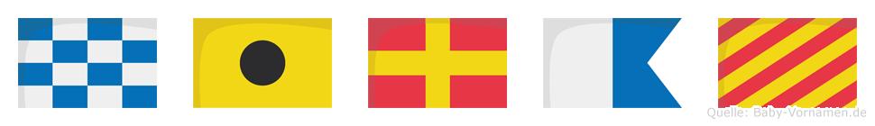 Niray im Flaggenalphabet