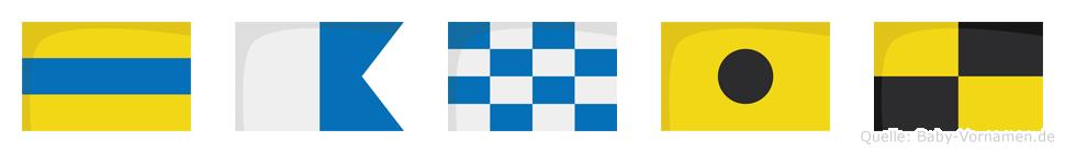 Danil im Flaggenalphabet