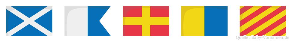 Marky im Flaggenalphabet