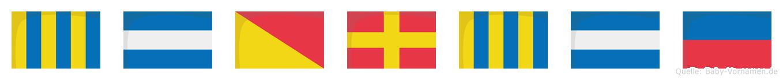 Gjorgje im Flaggenalphabet