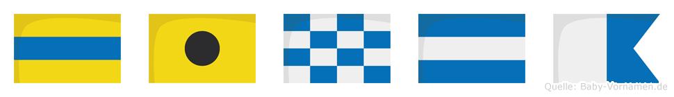 Dinja im Flaggenalphabet