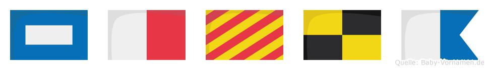 Phyla im Flaggenalphabet