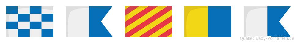Nayka im Flaggenalphabet
