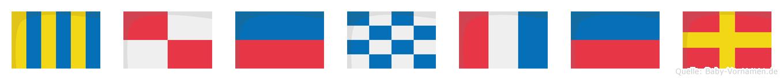 Günter im Flaggenalphabet