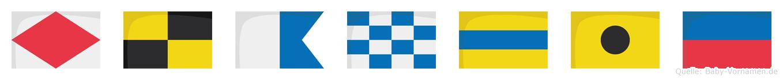 Flandie im Flaggenalphabet